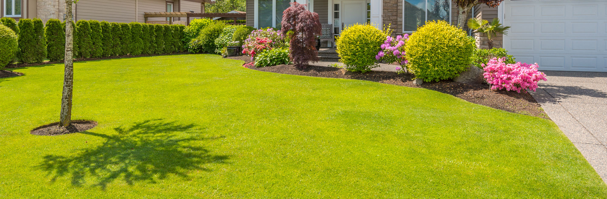 A beautiful green yard with flowers and trees by STI Landscaping