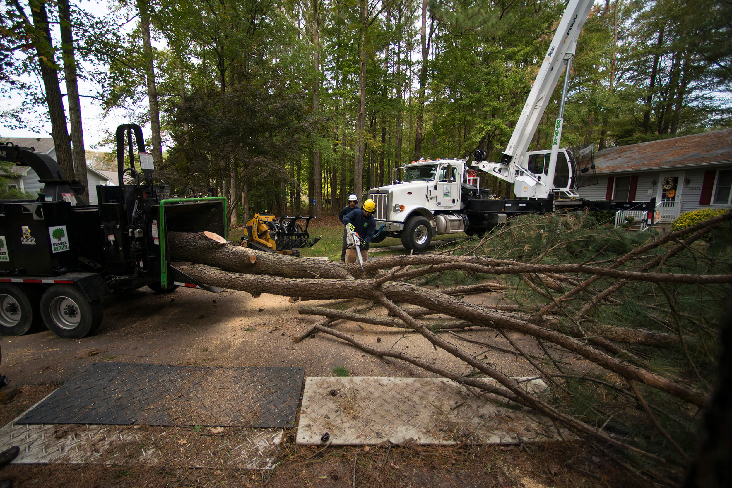 Sussex Crane Company chainsawing branches off downed tree