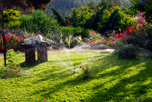 backyard garden being watered